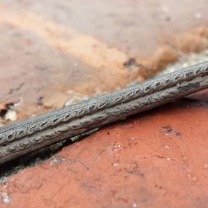 Ischyodus bifurcatus dorsal fin spine